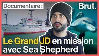 Les activistes de Sea Shepherd