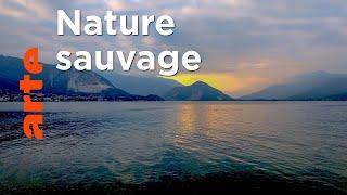 Le Lac Majeur | Par delà les Alpes