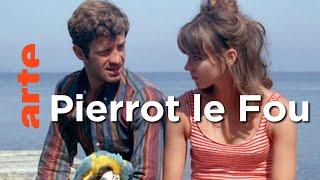 Documentaire Le Var de Jean-Luc Godard / Cornouailles / New York – Invitation Au Voyage