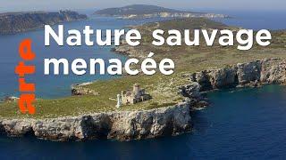 Les îles italiennes | Îles Tremiti