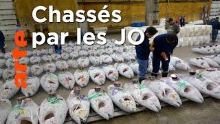 Documentaire Tokyo : le plus grand marché de poisson au monde