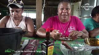 Documentaire Le ver de bancoule et l'anguille