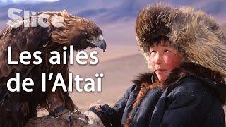 Apprivoiser un aigle pour devenir un homme en Mongolie