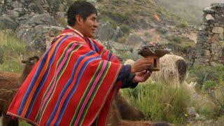 Bolivie | Kallawaya, fils de l'éclair