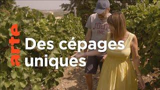 Documentaire Crète, le vin des dieux