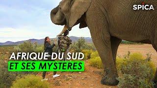 Les mystères de l'Afrique du Sud
