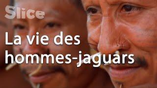 Le peuple Matis dans la forêt amazonienne