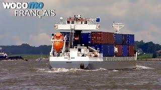 Documentaire Le transport fluvial en Europe – Un marché en plein essor