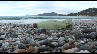 A Hyères des associations se mobilisent contre le plastique rejeté en mer Méditerranée