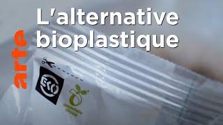Une solution aux problème environnementaux ?