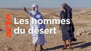 Dans les pas des chameliers du Sahara