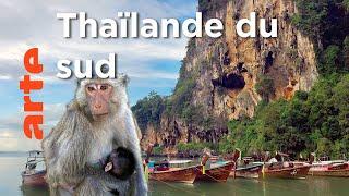 Documentaire Îles et plages du Sud   Thaïlande, la beauté sauvage