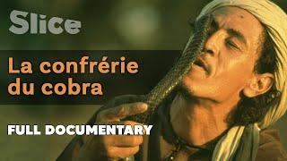 Documentaire La confrérie du cobra