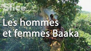 Documentaire La vie des Pygmées de République Centrafricaine