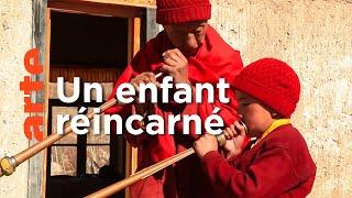 Documentaire Ladakh, le jeune Rinpoché et son parrain