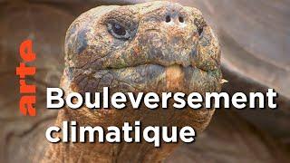 Les Galapagos - Province équatorienne | Voyages aux Amériques