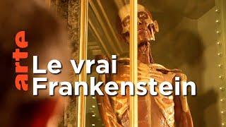 Luigi Galvani, l'homme derrière Frankenstein