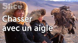 Mongolie : la relation entre le peuple Kazakh et l'aigle