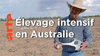 Australie, le continent désert | Planète sable (4/5)