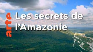 La Jungle | Amérique du sud, sur la route des extrêmes (1/5)