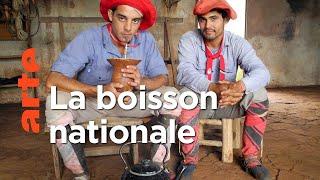 Documentaire Le maté, l'élixir des Argentins