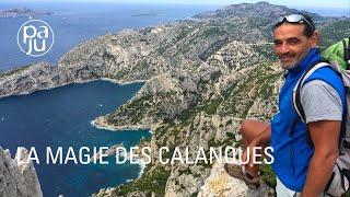 A la découverte des Calanques, joyau préservé des Marseillais