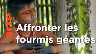 Documentaire Amazonie : devenir un homme | Rituels du monde