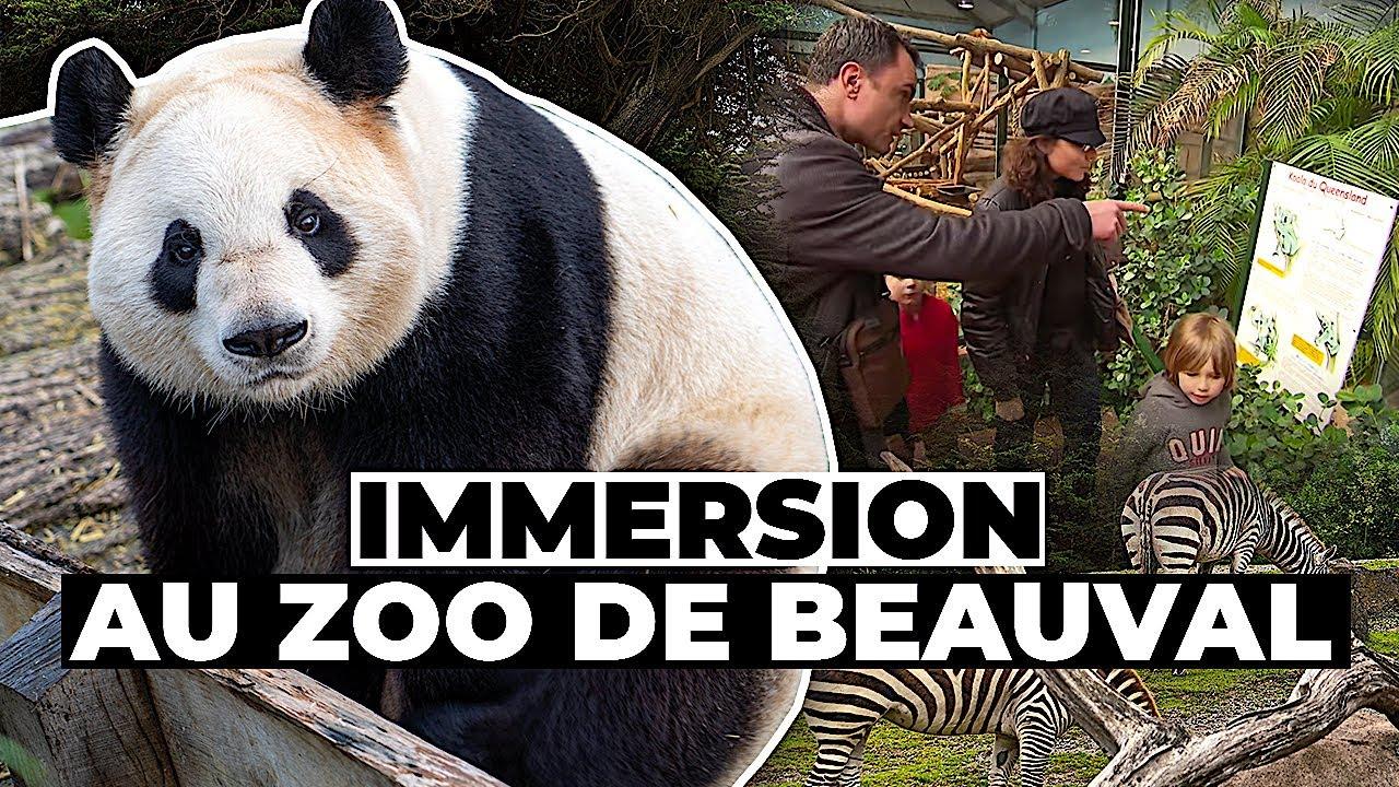 Documentaire Parcs animaliers, un business en or