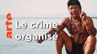Documentaire Amazonie – Enquête au coeur des luttes indigènes