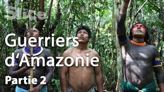 Documentaire Les Kayapós attaquent le nid de guêpes