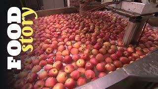 Documentaire Pink Lady, la pomme universelle