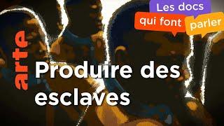1789 - 1888 : Les nouvelles frontières de l'esclavage | Les routes de l'esclavage (4/4)