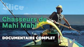 Chasseurs de Mahi Mahi