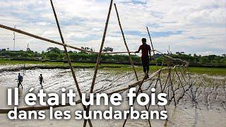 Documentaire Il était une fois dans les Sundarbans