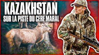 Kazakhstan : sur la piste du cerf maral