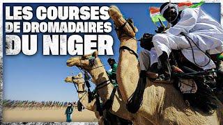 Les courses de dromadaires du Niger