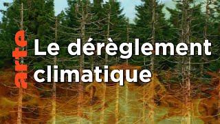 Les défis de la nature | France-Allemagne, une histoire commune