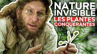 Nature invisible - Les plantes conquérantes