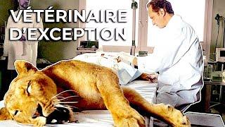 Vétérinaires d'exception
