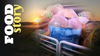 3900 litres d'eau pour produire un poulet !