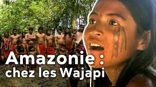 Amazonie : chez les Wajapi
