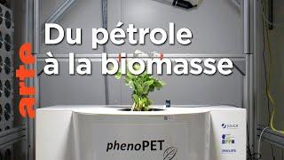 Bioéconomie : la révolution verte