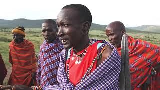 Le folklore bidonné des réserves Masai